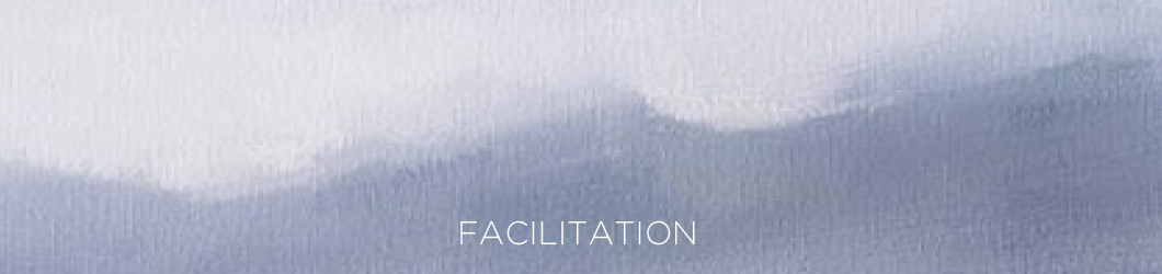 hd-FACILITATION
